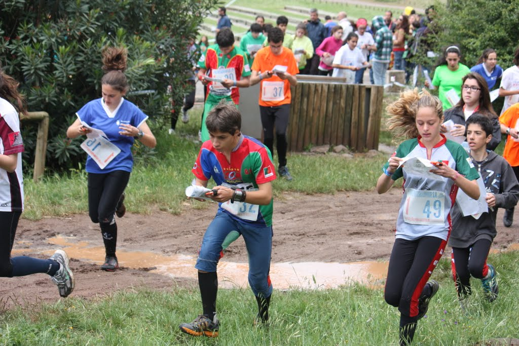 Photo of National Orienteering Championship started in Figueira da Foz