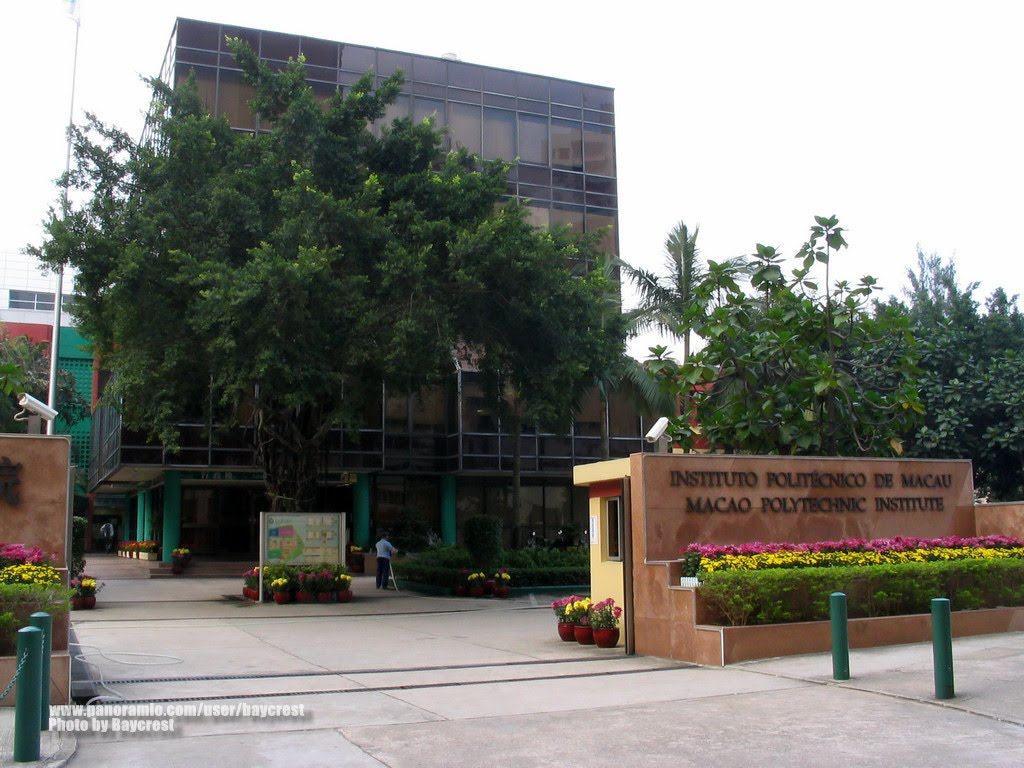 Photo of Portuguese students at the Macau Polytechnic Institute increased 66.7%
