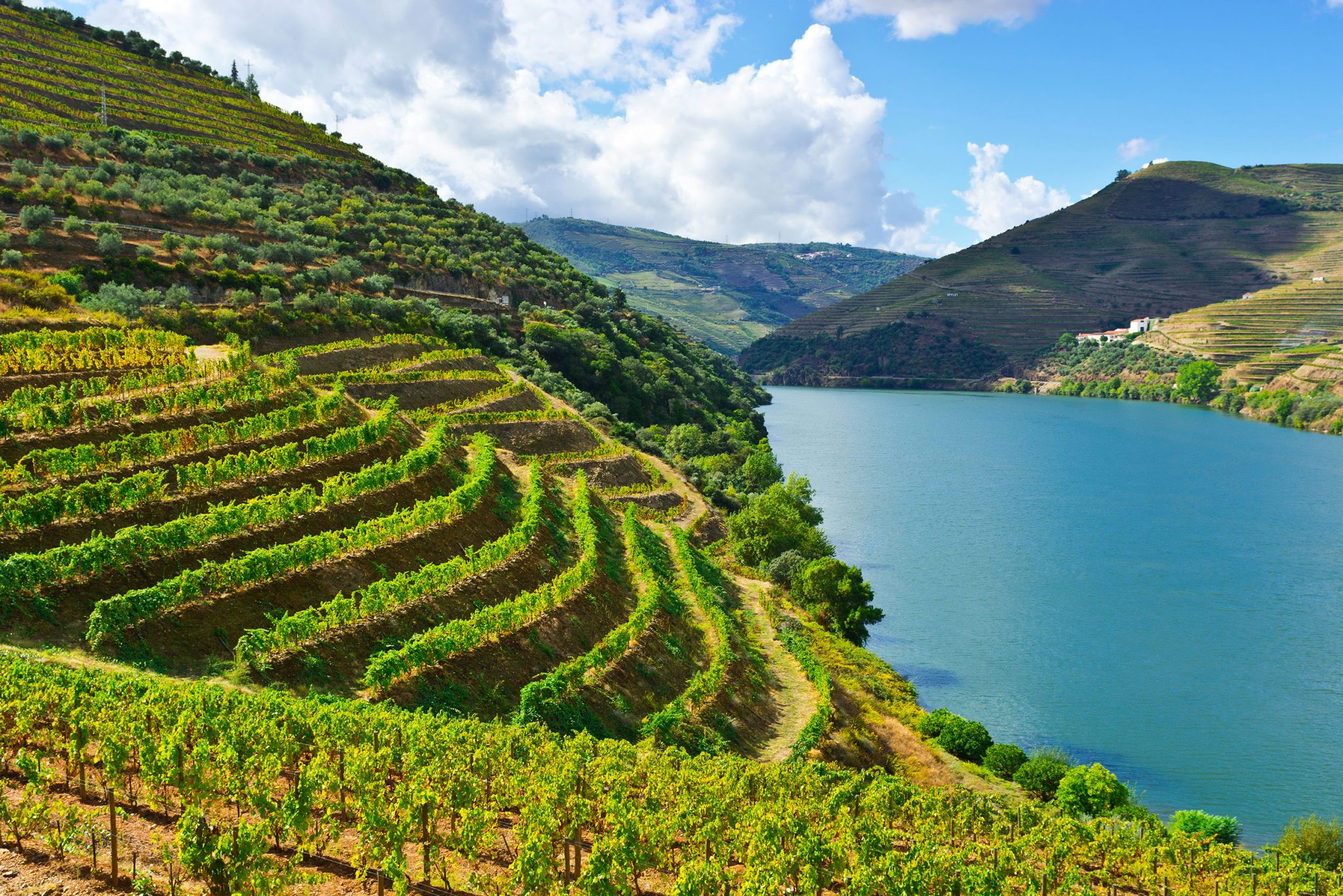 Photo of One of the most enchanting wine regions in the world