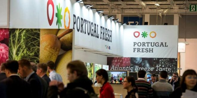 Photo of Producers of fruit and vegetables want to export 500 million to Spain