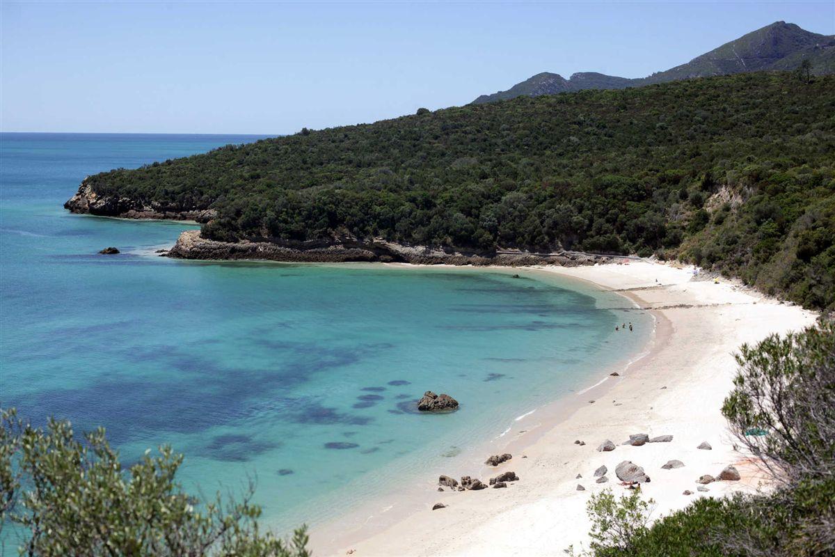 Photo of Galapinhos beach: Gallery