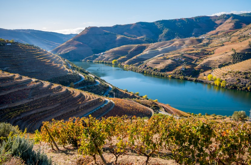 Photo of Douro helped to open the tourist map of Portugal and doubled overnight stays