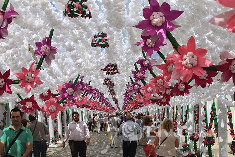 Photo of Festivities of Campo Maior in the Inventory of Intangible Cultural Heritage