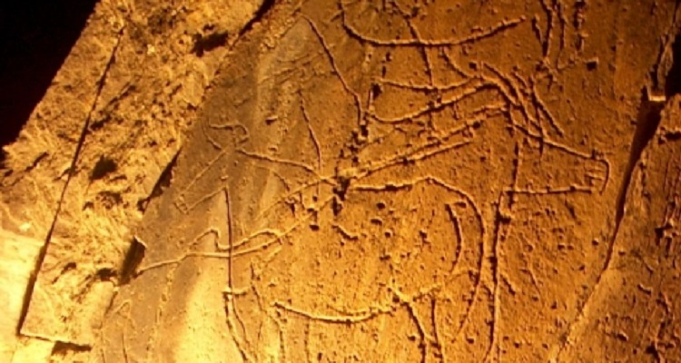 Photo of New archaeological discoveries in Coa show moving figures