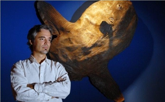 Photo of Miguel Bastos Araújo wins Pessoa Award 2018