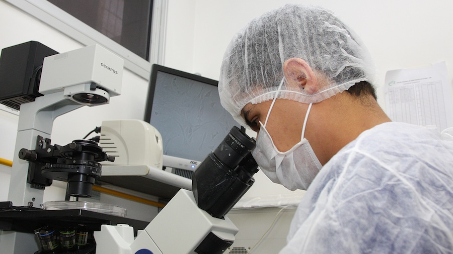 Photo of Team of Porto develops device for treatment of bone infections