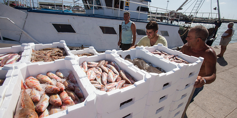 Photo of EU approves multi-annual fisheries plan for western waters