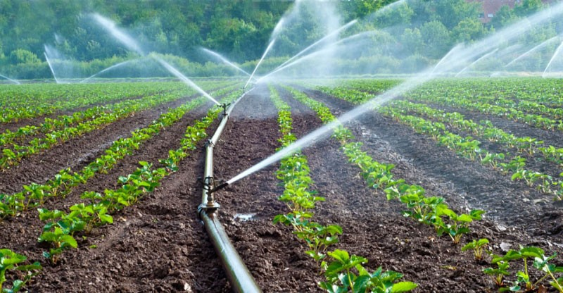 Photo of Government invests 560 million in irrigation to mitigate drought effects