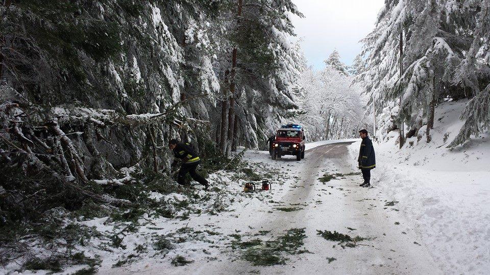 Photo of Snow closes access to the central massif of the Serra da Estrela
