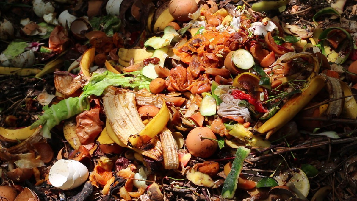 Photo of Iberian research wants to make garbage raw material