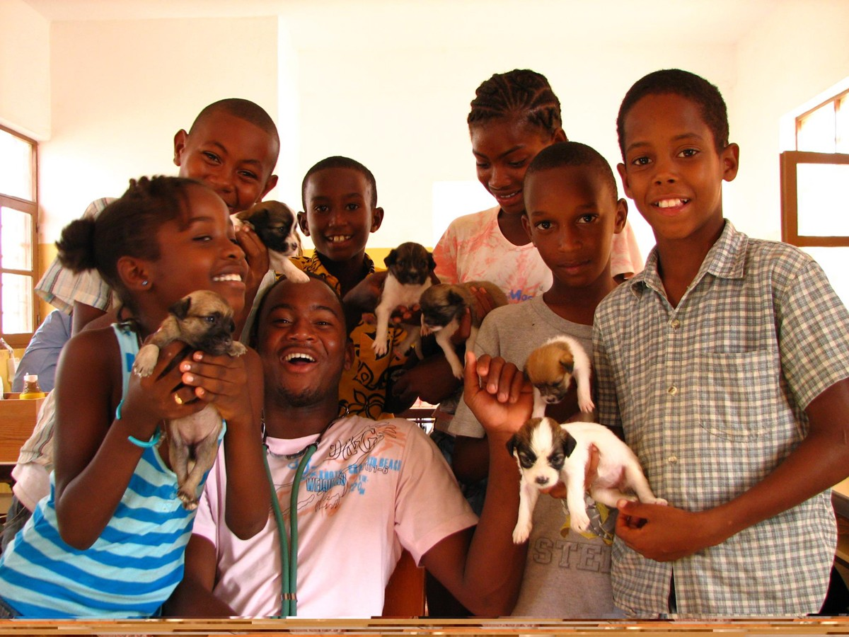 Photo of Portuguese veterinarians help treat hundreds of animals in Africa