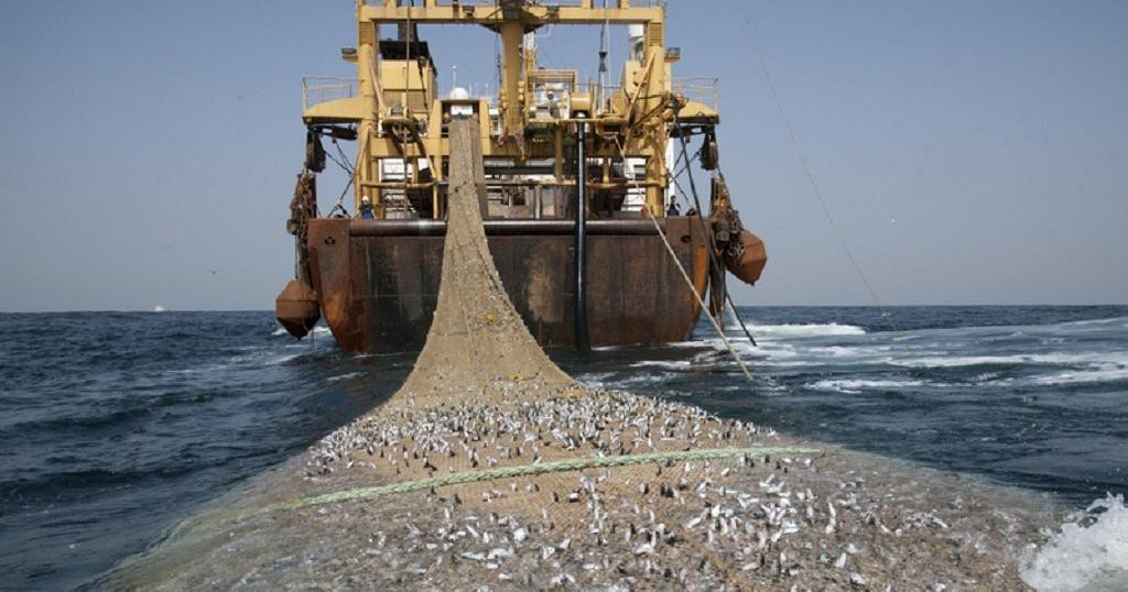 "Photo of Europe explores fishing in Africa in an ""opportunistic"" way, accuses Greenpeace"