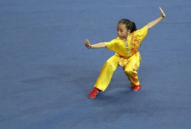 Photo of International meeting of kung fu masters in Macau