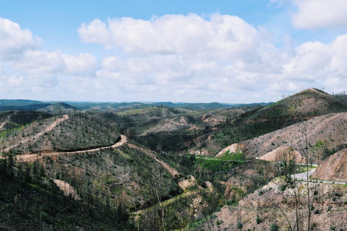 Photo of Serra de Monchique (Algarve)