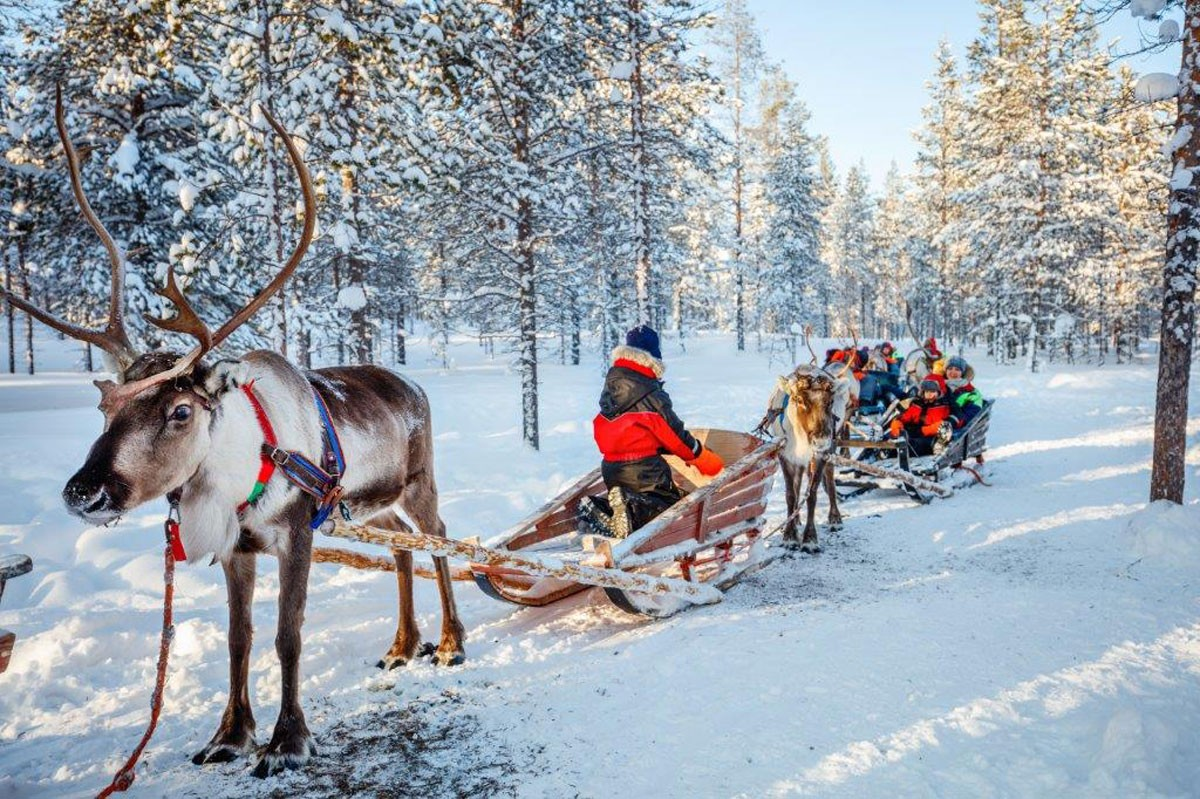 Photo of Lapland, where Christmas happens all year