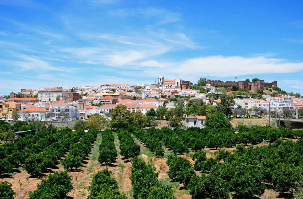 Photo of Silves – Gastronomy and Surroundings