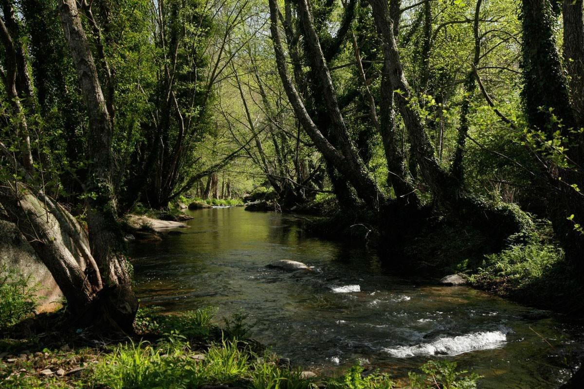 Photo of Serra de São Mamede: Natural Park