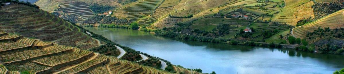 Photo of Douro Wine Region virtual visit
