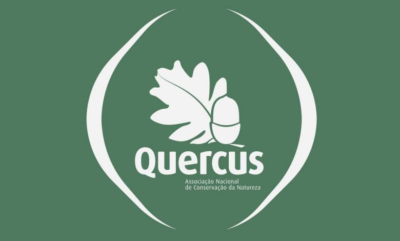 Photo of Quercus has a project to recover and protect freshwater mussels