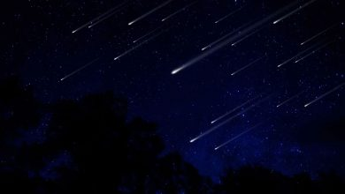 Photo of There's a meteor shower tomorrow