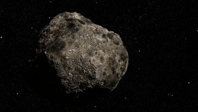 Photo of Asteroid will pass Earth next week