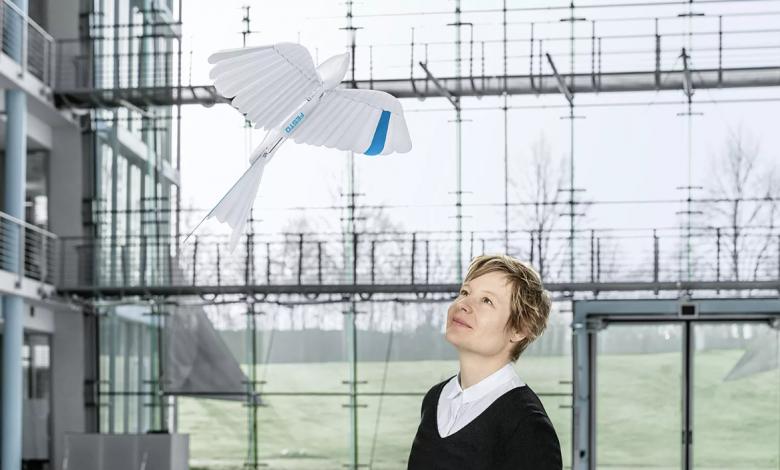 Photo of BionicSwifts, the new bionic swallows