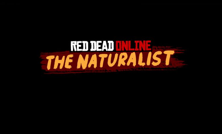 Photo of Red Dead Online adds the Naturalist Role