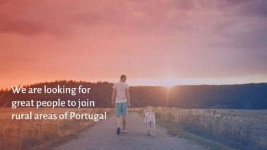Photo of Confinement leads to creation of platform for the promotion of remote work in Portugal's rural areas