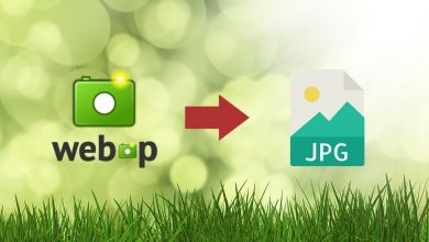 Photo of Best 3 ways to convert WEBP to JPG