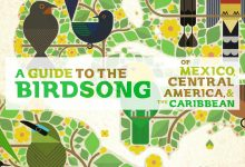 Photo of A Guide to the Birdsong of Mexico, Central America & the Caribbean, the album