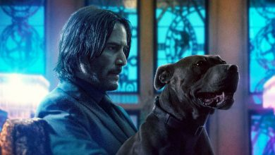 Photo of Lionsgate confirms John Wick's fifth film