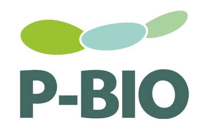 Photo of P-BIO launches Clube de Mentores to boost the biotechnology sector in Portugal