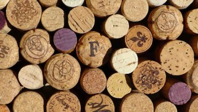 Photo of Cork sector grew in value and activity
