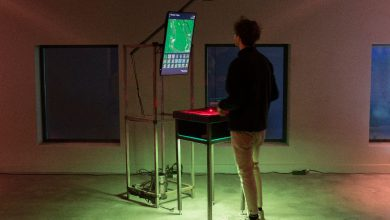 Photo of Interactive facility that identifies islands wins Edigma Semibreve 2020 award