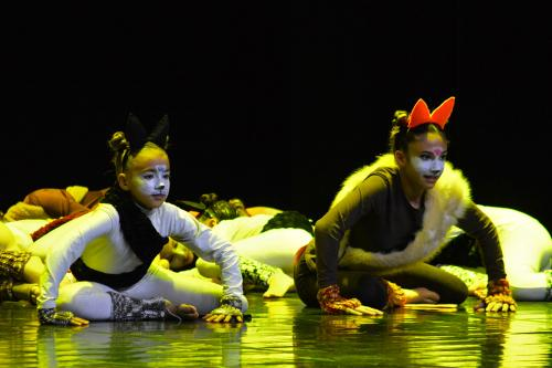 Momentus2020Luís Mirra Serrãoportugalinews.eu 005